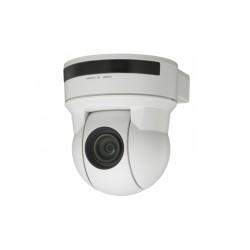 Sony EVI-D90P/W - Caméra de surveillance - PIZ - couleur - 550 TVL - S-Video, composite - DC 12 V