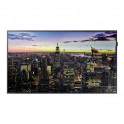 """Samsung QM55H - Classe 55"""" - QMH Series écran DEL - signalisation numérique - 4K UHD (2160p) 3840 x 2160 - système de rétroécl"""