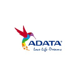 ADATA P10050 - Banque d'alimentation - 10050 mAh - 2.4 A - 2 connecteurs de sortie (USB) - sur le câble : Micro-USB - blanc