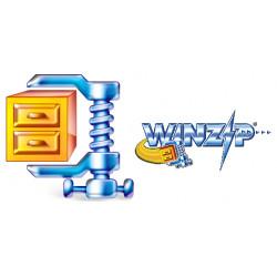 WinZip Standard - Maintenance (2 ans) - 1 utilisateur - CLP - niveau B (10-24) - Win - Multilingue