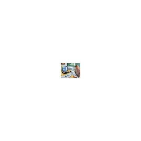 OKI - 297 x 900 mm - 160 g/m² - 40 feuille(s) papier bannière - pour C8600, 9300dn V2, 9300hdn V2, 9300n V2, 9500, 9500dn V2, 9