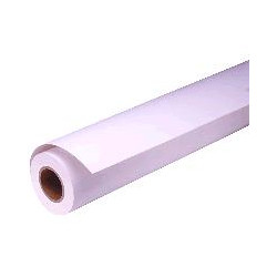 Epson presentation - papier - papier mat - rouleau a1 (61,0 cm x 25 m) - 172 g/m2