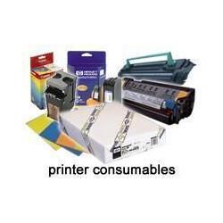 Epson enhanced - papier - papier synthetique - rouleau (111,8 cm x 40,5 m) - 77 g/m2 - 1 pc.