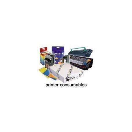 Epson ultrasmooth fine art - papier - papier chiffon - blanc naturel - rouleau a1 (61,0 cm x 15,2 m) - 250 g/m2 - 1 pc.