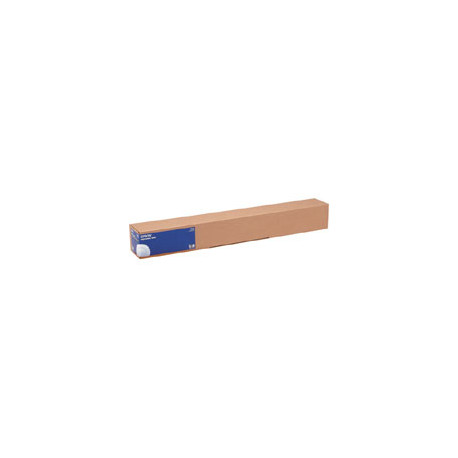 Epson - Brillant - Rouleau (60 cm x 30,5 m) - 250 g/m² - 1 rouleau(x) papier photo - pour SureColor SC-P10000, P20000, P6000, P