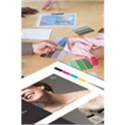 Epson Proofing Paper - Semi-mat - enduit de résine - 9,9 millièmes de pouce - blanc - rouleau (33 cm x 30,5 m) - 225 g/m² - 1 r