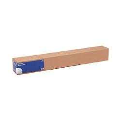 Epson - Mat - Rouleau (43,2 cm x 12,2 m) 1 rouleau(x) papier toilé - pour SureColor P5000, P800, SC-P10000, P20000, P5000, P750