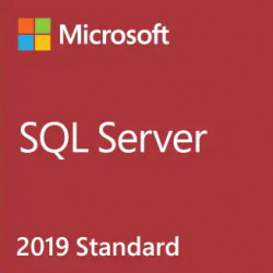 Microsoft SQL Server 2019 Standard - Licence - licence ouverte - Linux, Win - Single Language