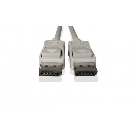 Fujitsu - Câble DisplayPort - DisplayPort (M) pour DisplayPort (M) - pour Celsius J580, R940, CELSIUS Mobile H970, ESPRIMO D538