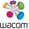 Wacom Intuos Pro Small - Numériseur - droitiers et gauchers - 16 x 10 cm - multitactile - électromagnétique - 6 boutons - sans
